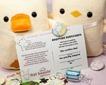 Flat-Bonnie-Adopt-A-Plush-Certificate