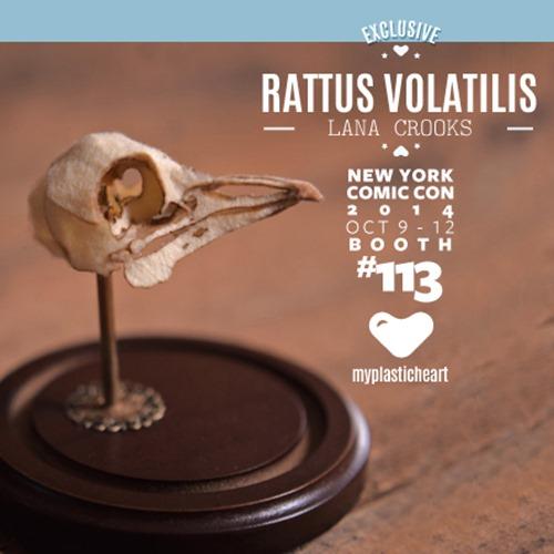 nycc2014_rattusvolantilis